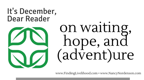 Dear Reader newsletter for December 2015